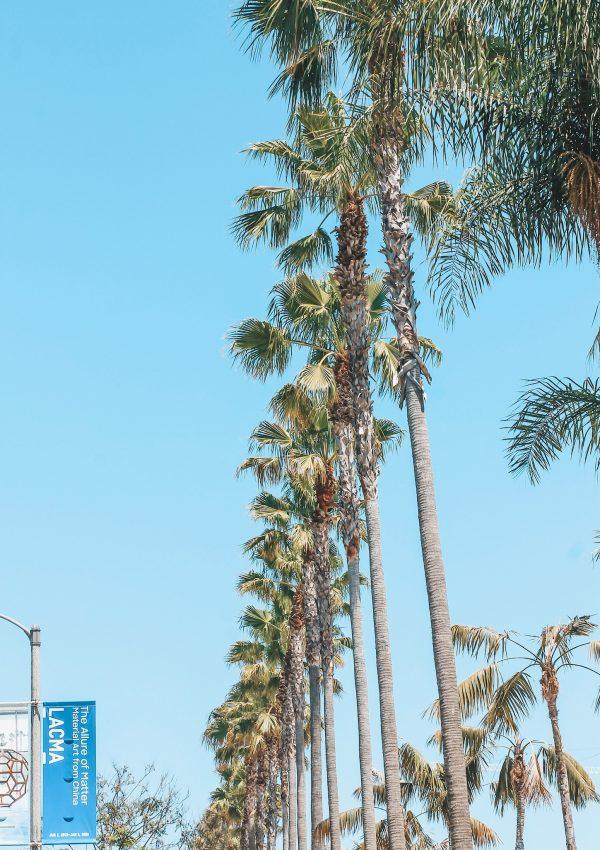 Things to Do in LA: Weekend Travel Guide